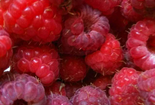 ягода малина маски для лица из малины, маски из лесных ягод, домашние рецепты красоты